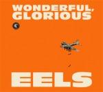 eels wonderful glorious