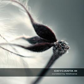 oxycanta 3
