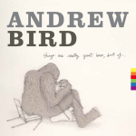 andrew bird things are really great here